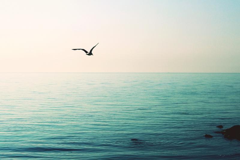 Čierne more 3